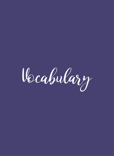 Vocabulary 13