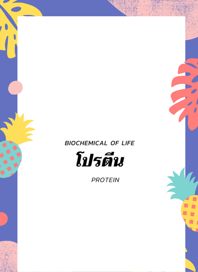 Biochemical of life (Ep : 3 Protein)